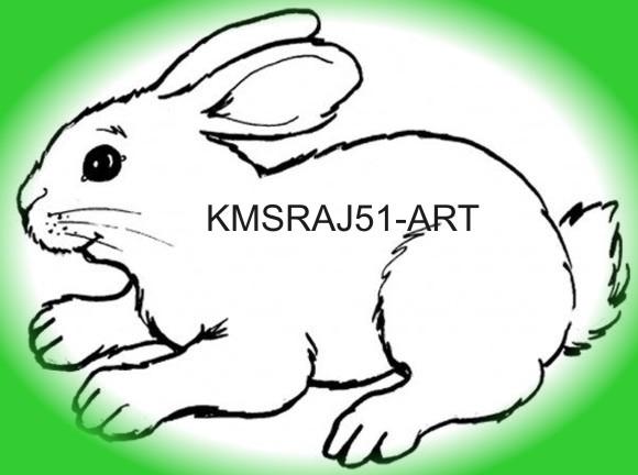 Mera Pyara Rabbit ~ kmsraj51 Art