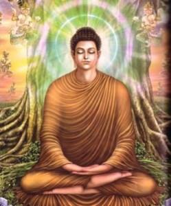 bbuddha
