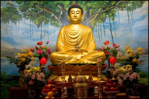 BUDDHA - KMSRAJ51