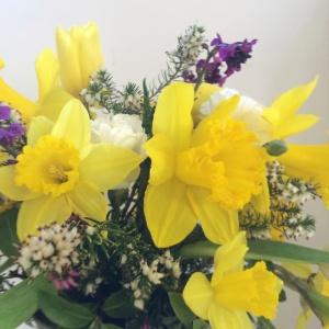 Spring Flower EHS Spring Show
