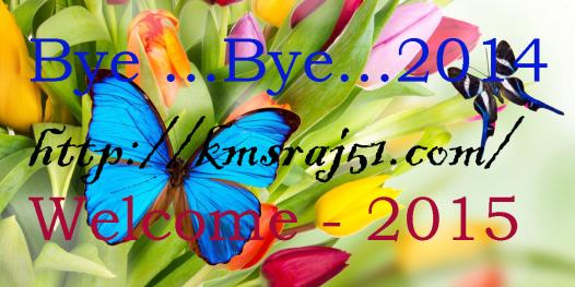 Bye-Bye-2014-kmsraj51