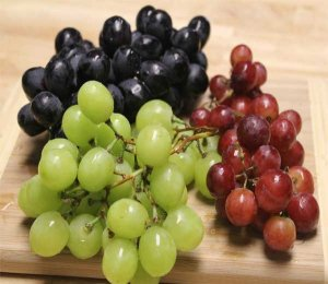 Grapes-kmsraj51