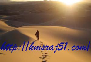 Wandering-humen-kmsraj51