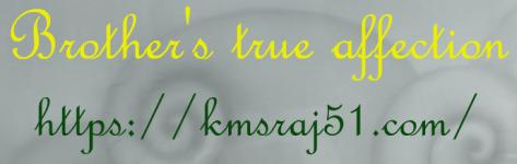 BTA-KMSRAJ51