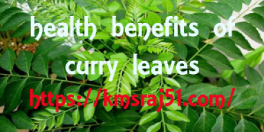 kmsraj51-curry-leaves