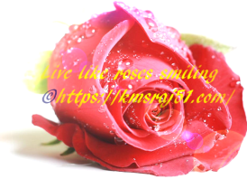 kmsraj51-live-like-roses-smiling